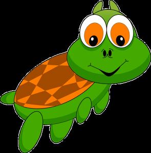 ne faîtes pas la tortue